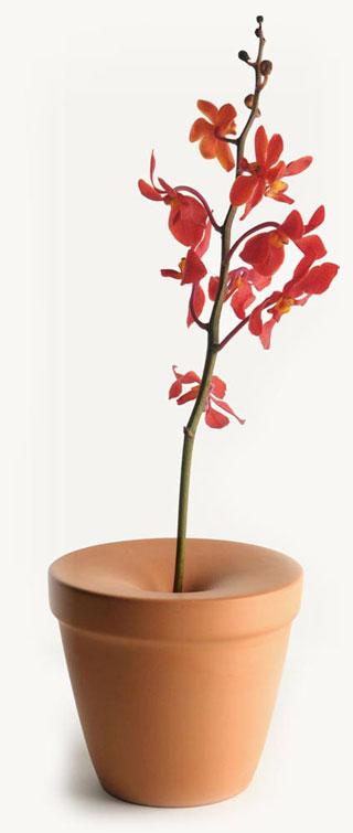 Mint bud vase